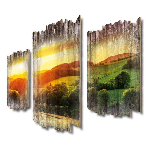 Wiesen & Felder Shabby chic 3-Teiler Wandbild aus Massiv-Holz