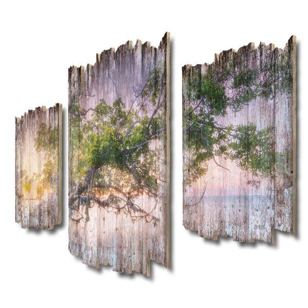 Zauberbaum Shabby chic 3-Teiler Wandbild aus Massiv-Holz