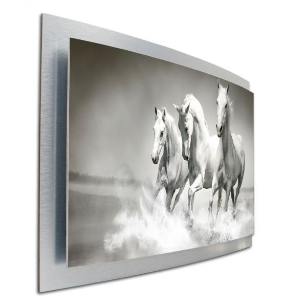 3D Wandbild Pferde Reiten aus gebürstetem Aluminium