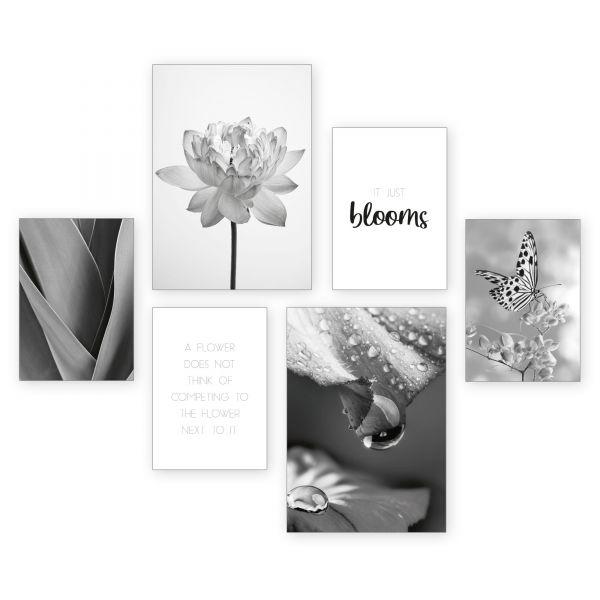 """Blüten Natur"" 6-teiliges Poster-Set - optional mit Rahmen - 2 x DIN A3 & 4 x DIN A4"