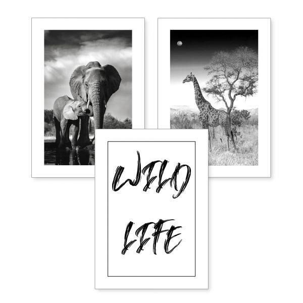 3-teiliges Poster-Set | Wild Life | optional mit Rahmen | DIN A4 oder A3
