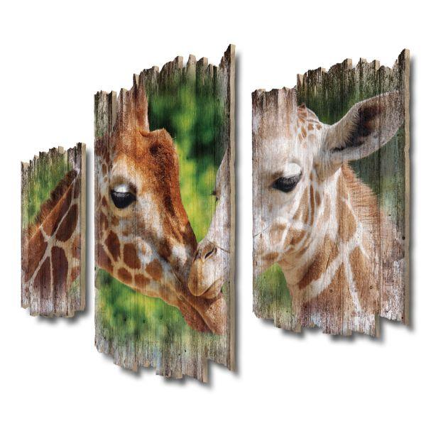 Giraffenfamilie Shabby chic 3-Teiler Wandbild aus Massiv-Holz