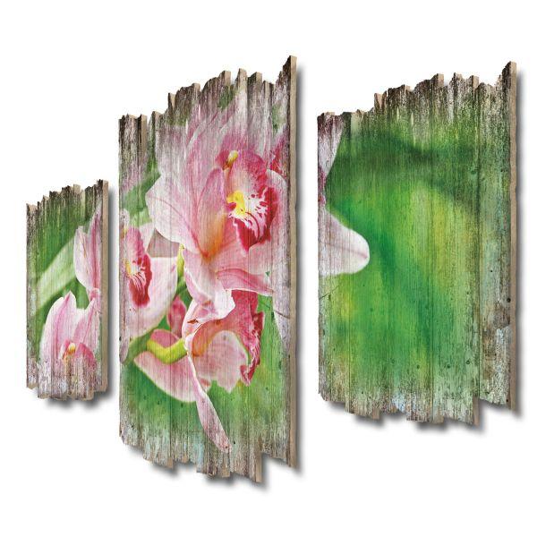 Orchideen Shabby chic 3-Teiler Wandbild aus Massiv-Holz
