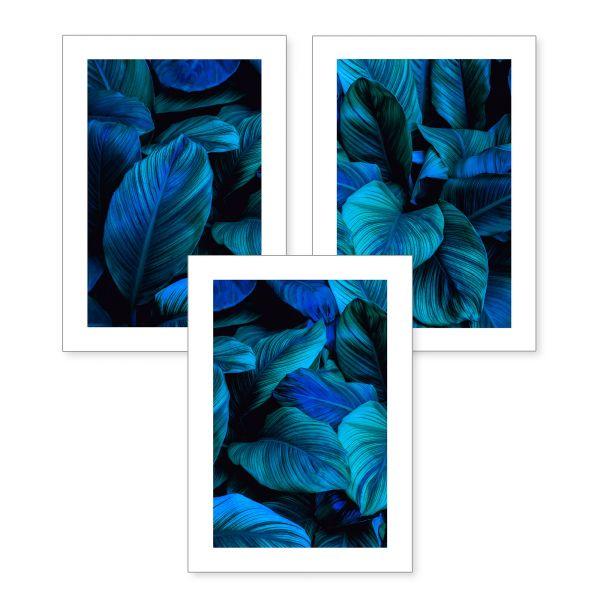 3-teiliges Poster-Set | Botanik blau | optional mit Rahmen | DIN A4 oder A3