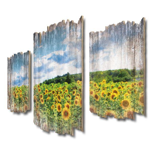 Sonnenblumenfeld Shabby chic 3-Teiler Wandbild aus Massiv-Holz