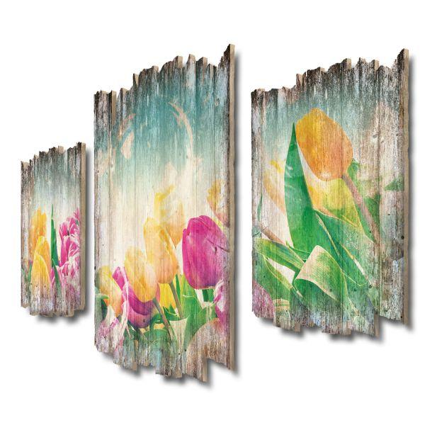 Tulpen und Seifenblasen Shabby chic 3-Teiler Wandbild aus Massiv-Holz