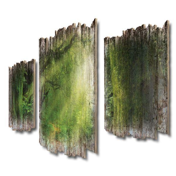 Im Herzen des Dschungels Shabby chic 3-Teiler Wandbild aus Massiv-Holz