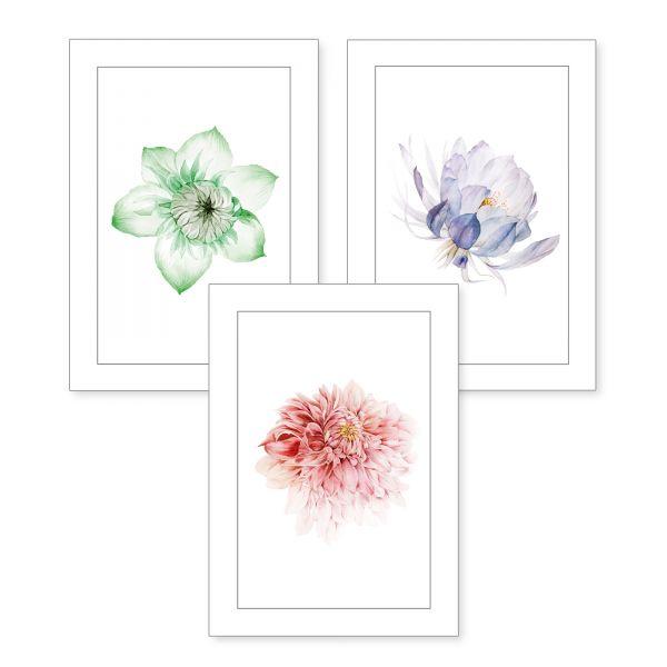 3-teiliges Poster-Set | Bunte Blüten | optional mit Rahmen | DIN A4 oder A3