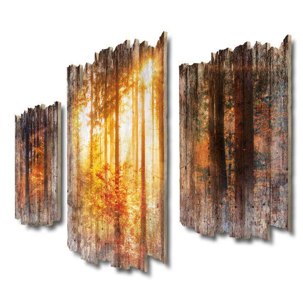 Herbstwald Shabby chic 3-Teiler Wandbild aus Massiv-Holz