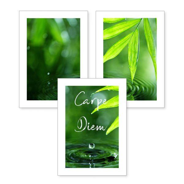 3-teiliges Poster-Set | Botanik grün | optional mit Rahmen | DIN A4 oder A3