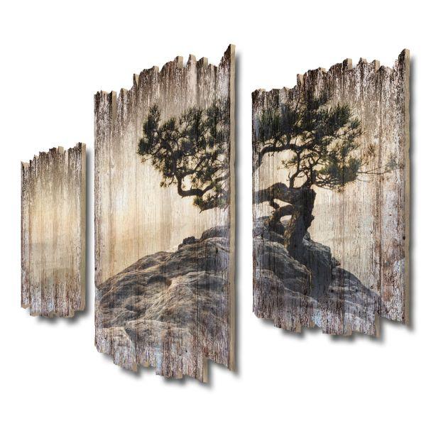 Einsamer Baum Shabby chic 3-Teiler Wandbild aus Massiv-Holz