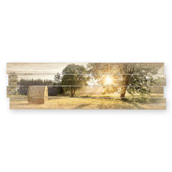 Land-Idylle | Shabby chic Holzbild | ca.100x30cm