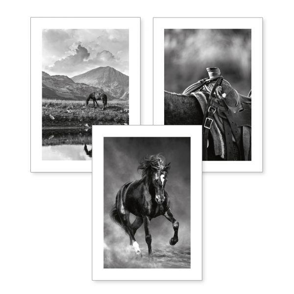 3-teiliges Poster-Set | Pferde | optional mit Rahmen | DIN A4 oder A3