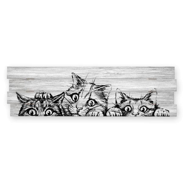 Kätzchen | Shabby chic Holzbild | ca.100x30cm