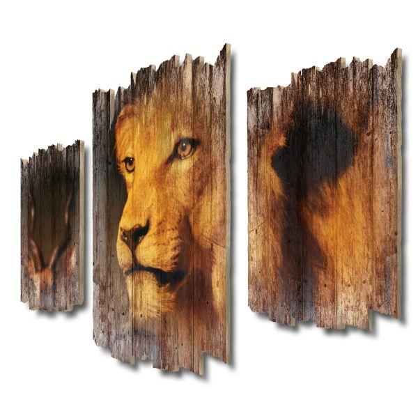 Löwenblick Shabby chic 3-Teiler Wandbild aus Massiv-Holz