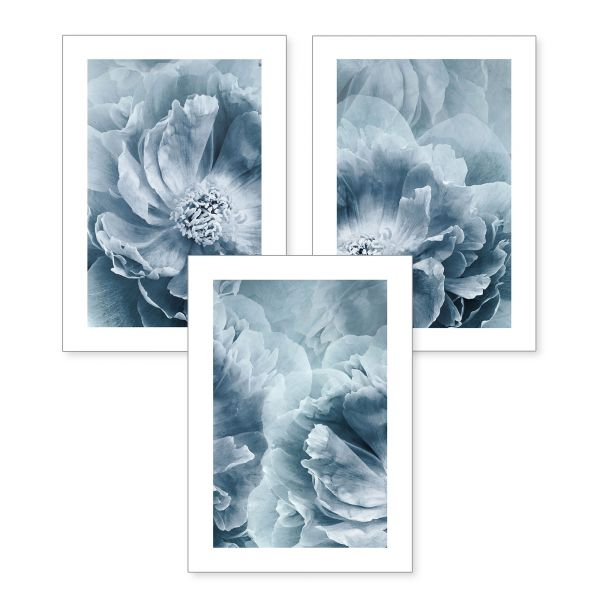 3-teiliges Poster-Set | Blaue Blumen | optional mit Rahmen | DIN A4 oder A3