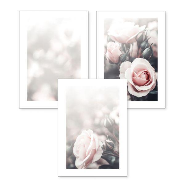 3-teiliges Poster-Set | Rosen | optional mit Rahmen | DIN A4 oder A3