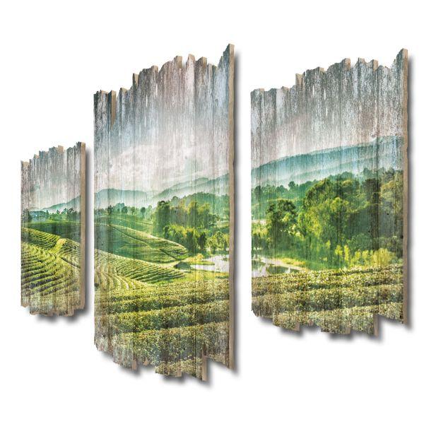 Teeplantage Shabby chic 3-Teiler Wandbild aus Massiv-Holz